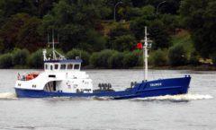 taurus-4